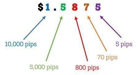 pips-explained.jpg